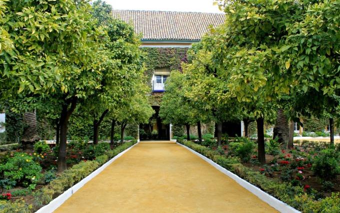 entrada-al-palacio-de-las-duenas-de-sevilla