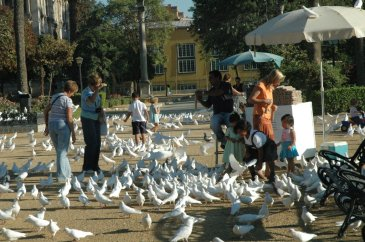 glorieta-de-las-palomas-1