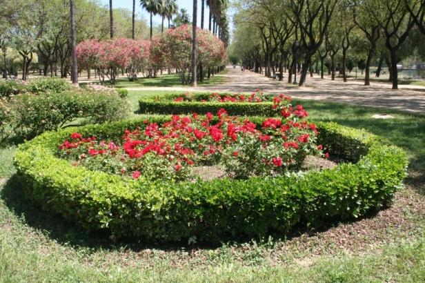 i-3-glorieta-ceritos-seto-bonetero-rosales-x1024