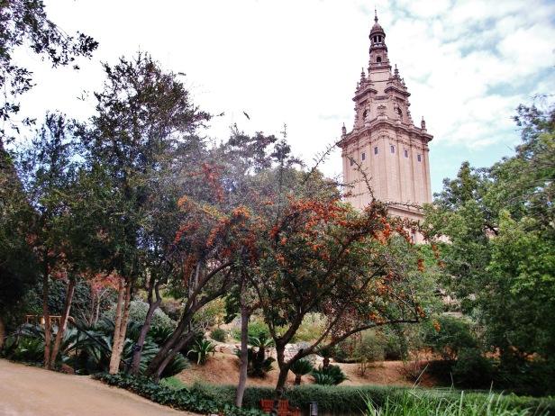 jardin-botanico-historico-de-montjuich-barcelona-k2