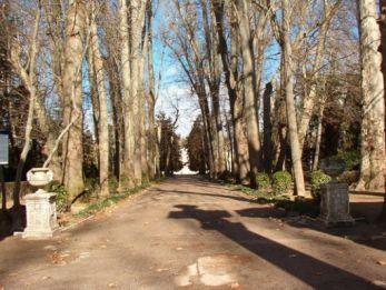 jardin-del-principe-10