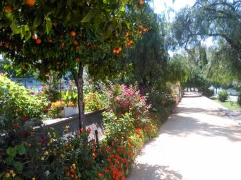jardines-de-chapina-ad