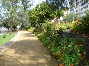 jardines-de-chapina-mayo-2015