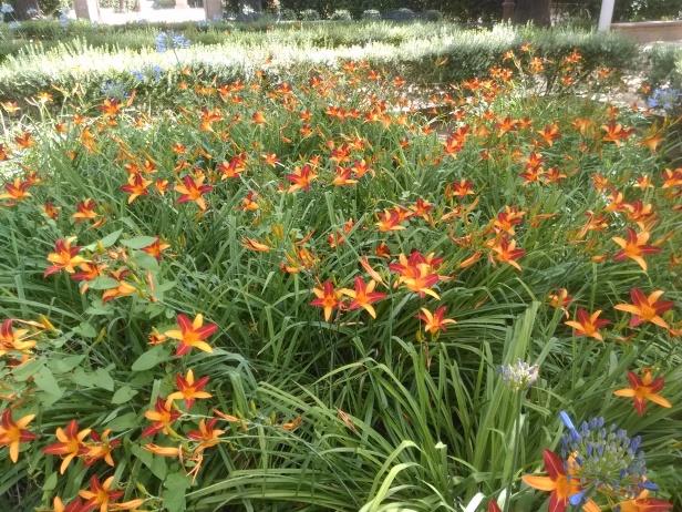 jardines-de-cristina_855