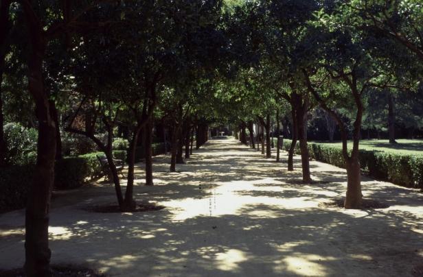 jardines-de-las-delicias-paseo-de-naranjos