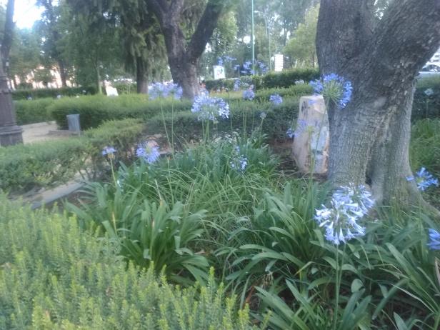 jardinesdecristina-027