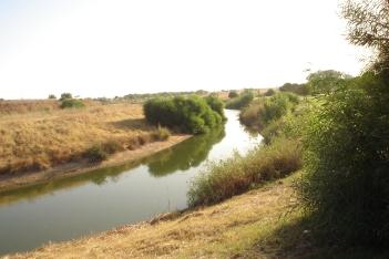 nous-parcs-parque-del-tamarguillo-arroyo-004-2