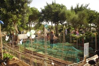 nous-parcs-parque-del-tamarguillo-huertos-familiares-056-2