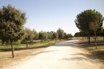 nous-parcs-parque-del-tamarguillo-paseos-037-2