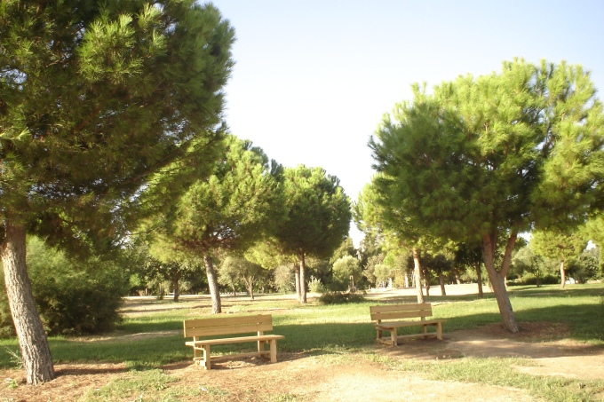 nous-parcs-parque-del-tamarguillo-pinus-008-2