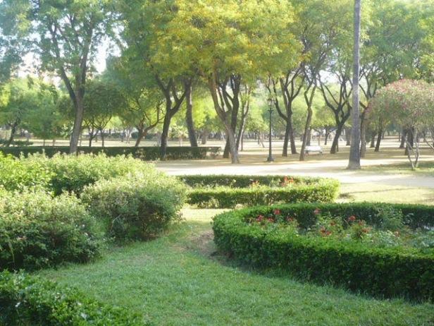 parque-amate-jun-2012-19