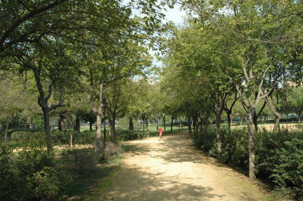 parque-de-amate-031-moreras-2