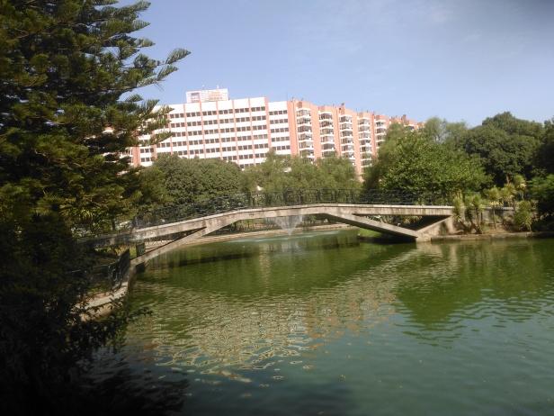 parque-de-los-principes-puente-3-de-sept-2016-043