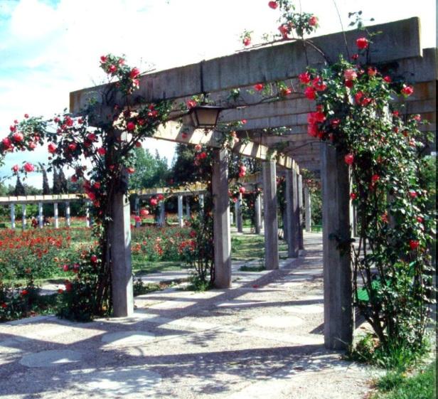 parque-de-los-principes_rosaleda-1