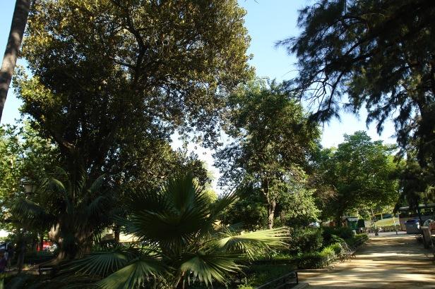 parque-de-maria-luisa-3-14-avda-isabel-la-catolica-c