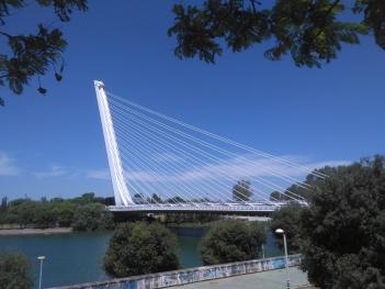 parque-de-san-jeronimo-126