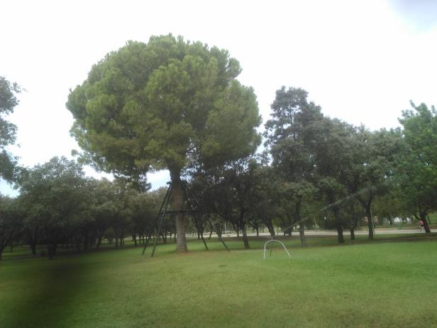 parque-del-alamillo-sept-2016-101