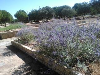 parque-del-tamarguillo-san-ildefonso-sept-2015-055