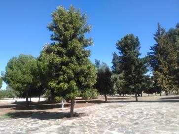 parque-del-tamarguillo-san-ildefonso-sept-2015-056