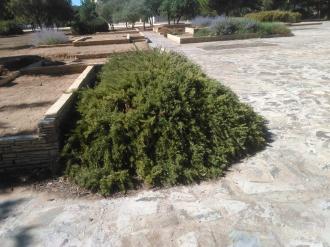parque-del-tamarguillo-san-ildefonso-sept-2015-057