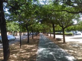 paseo-de-melias-jul-2016-002