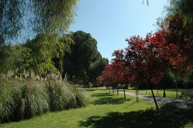 sevila-parque-de-los-principes-mar-2008-010