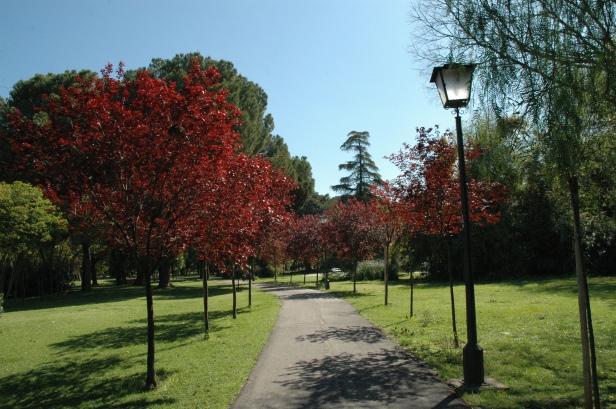 sevila-parque-de-los-principes-mar-2008-011