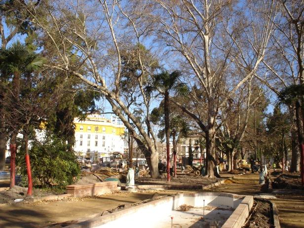 sevilla-febrero-plantacion-a2