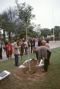 sevilla-parque-celestino-mutis-arbol-conmemorativo