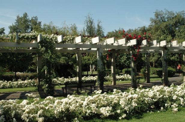 sevilla-parque-de-los-principes-la-sevillana-blanco016_redimensionar