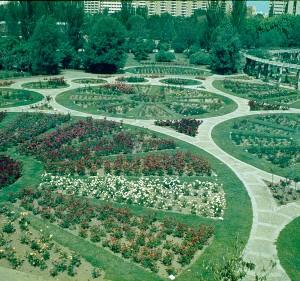 sevilla-parque-de-los-principes-rosaleda-a2