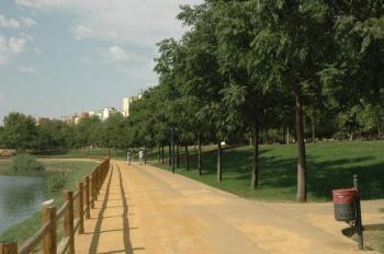 sevilla-parque-de-miraflores-borde-de-la-laguna-grande