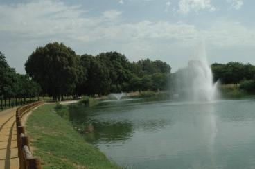 sevilla-parque-de-miraflores-oxigenadores