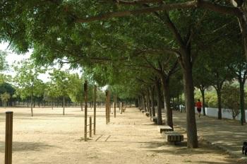 sevilla-parque-de-miraflores-sur