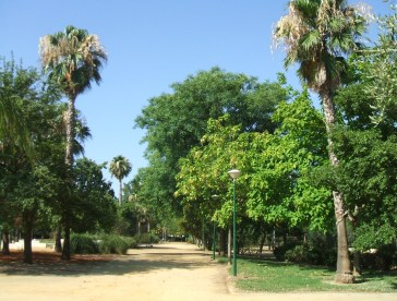 sevilla-parque-jose-celestino-mutis-k