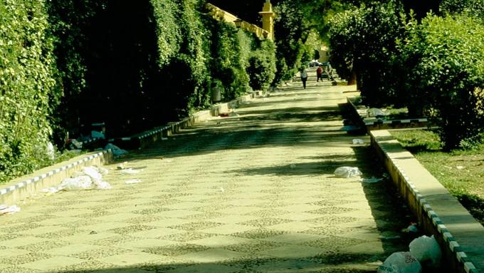 sevilla-paseoe-catalina-de-ribera-aa1-2-copia