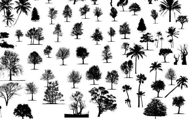 siluetas-arboles-vector-silueta-arbol-tree-silhouette