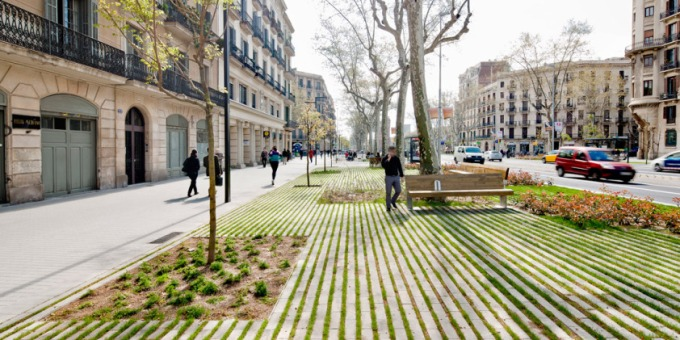 arbol-passeig-de-st-joan-boulevard-by-lola-domecc80nech-05c2a9-adriacc80-goula