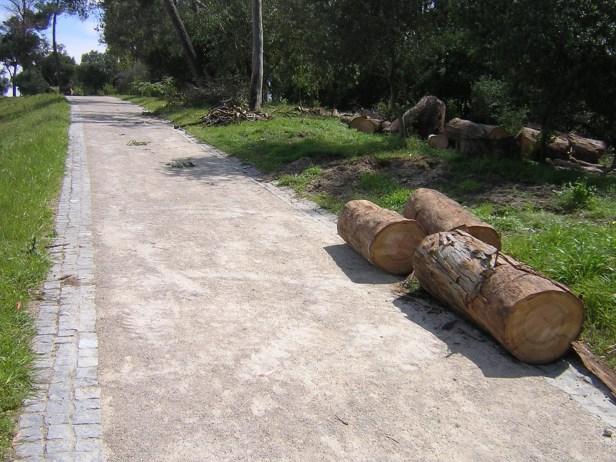 aripaq-pavimento-ecologico-para-exteriores-k