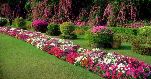 diseno-de-jardines-airrigarden-paisajismo-y-diseno-jardines07-720x380
