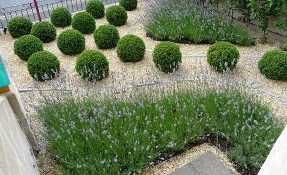 la jardinera sostenible en los espacios verdes urbanos