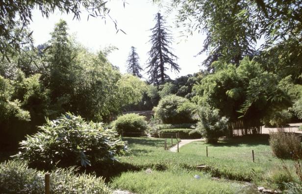 francia-anduze-la-bambuserie-2003-af