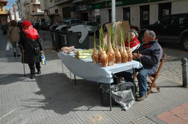 huelva-venta-de-palmitos