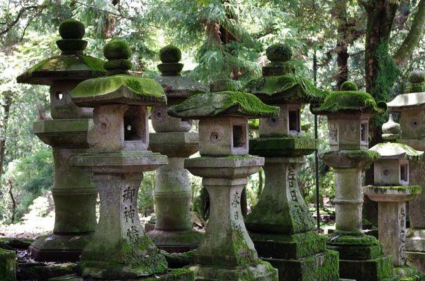 japan-nara_stone_lanterns_2166