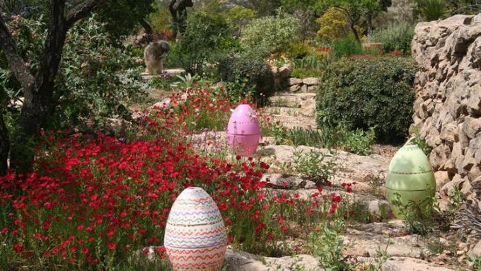 jardin-mediterraneo-ajardin-lirios-y-rosas-benissa-9