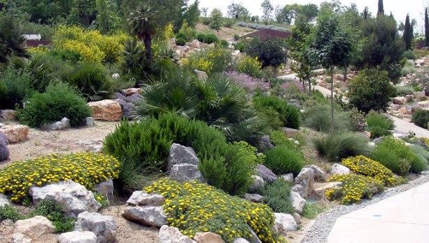 jardin-mediterraneo-ar4