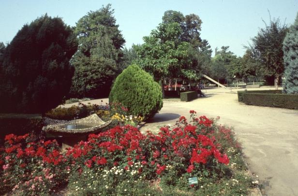 jardineria-urbana-parterres-de-flor-mh