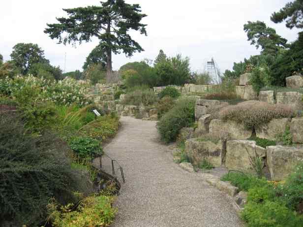 kew-rock-garden-1