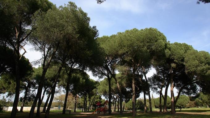 parque-de-la-corchuela-entorno1