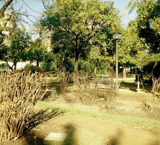 poda-jardines-de-las-delicias-a2